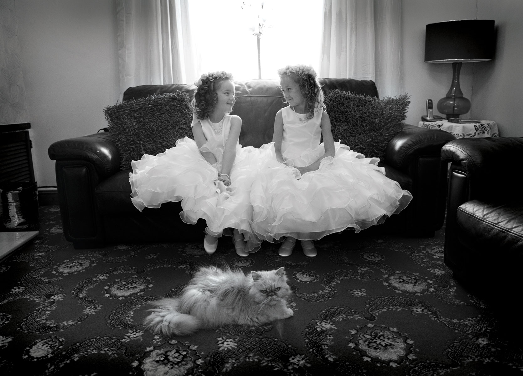 South-wales-wedding-photographer-pre-wedding-preparations-Bridesmaids-cross-cat